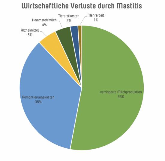 Darstellung der wirtschaftlichen Verluste durch Mastitis